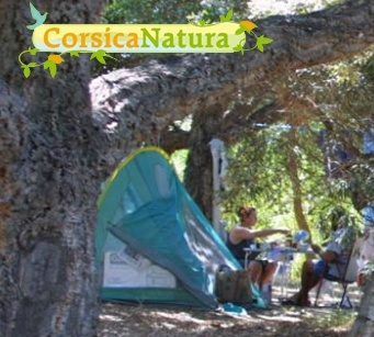 corsica_natura